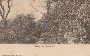Prestatyn , Denbighshire, Wales , 1910 ; Woods