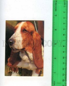 260029 USSR Basset hound DOG Pocket CALENDAR 1991 year