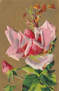 Embossed, Pink Rose, Gold background, 1900-10s