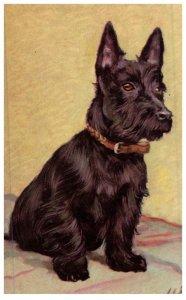 Dog , Scottie   , artist signed ,