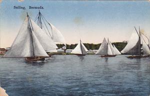 Bermuda Sailboats Sailing