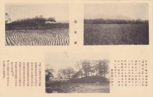 Farming , Japan , 20-40s