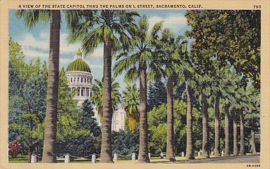 A View Of The State Capitol Thru The Palms Of  L Street Sacramento California...