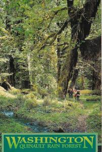Washington Quinault Rain Forest