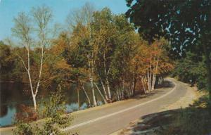 Greetings from Loon Lake Lodge - Cloyne, Ontario, Canada - pm 1958