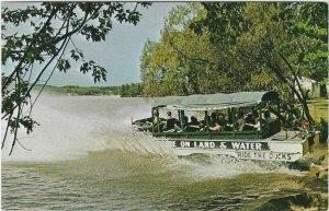 Vintage postcard, Duck entering Lake Delton, Wisconsin Dells, Wisconsin