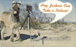 Camera Post Card Postcard Old Vintage Antique