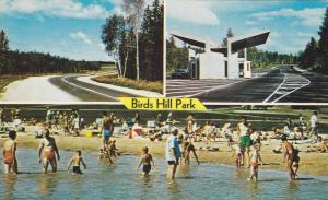 3-Views, Birds Hill Park, Swimming, Manitoba, Canada, 1940-1960s