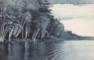 Maine Lake Kezar Birches Along The Shore Albertype