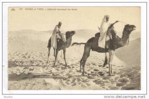 Mehariste traversant les dunes, Africa, 00-10s
