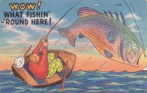 Fishing Humour Wow What Fishin' 'Round Here