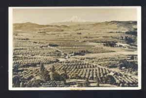 RPPC HOOD RIVER VALLEY MT. HOOD OREGON VINTAGE REAL PHOTO POSTCARD