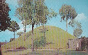 West Virginia Moundsville The Indian Grave Creek Mound