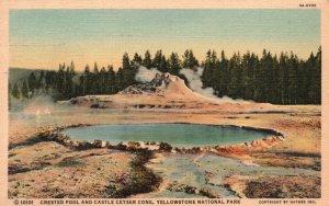 Yellowstone Park, WY, Crested Pool & Castle Geyser Cone, 1938 Postcard g8227