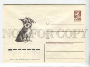 3178943 USSR Dog POSTAL COVER