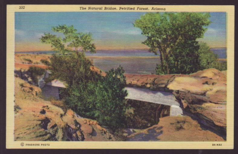Natural Bridge,Petrified Forest,AZ Postcard