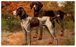 Dog ,  Spaniels