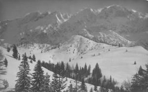 Anton Karg Kufstein Forest Mountain Landscape Postcard