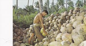 Husking Coconuts, Singapore, 40-60´s