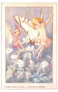 Margaret Tarrant~Fantasy Fairies Dance on Wood Anemone or Windflower~Medici