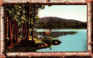 New York Adirondacks Beautiful Lake Scene 1909