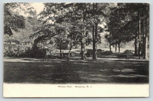Westerly Rhode Island~Wilcox Park~Path Winds Past Benches Under Trees~1905 B&W
