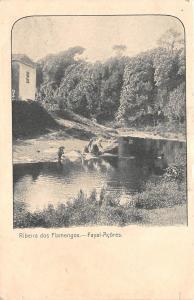 B92672 ribeira dos flamengos fayal acores azore portugal