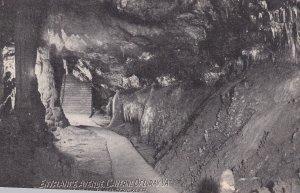 LURAY, Virginia, 1900-1910's; Entrance Avenue, Caverns Of Luray