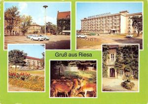 Gruss aus Riesa, Leninplatz Im Tierpark Am Rathaus Haus der Stahlwerker