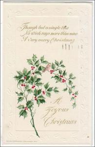 Christmas, Holly by John Winsch