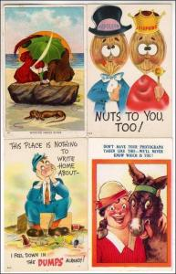 4 - Humour Cards