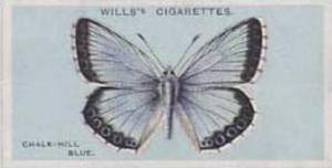 Wills Vintage Cigarette Card British Butterflies No. 5 Chalk Hill Blue 1927