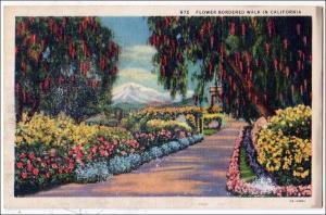 Flower Bordered Walk in CA