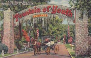 Florida St Augustine Entrance To The Fountain Of Youth Curteich