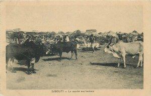 DJIBOUTI - the cattle market