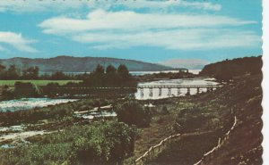 FORT FRASER, B.C., Canada, 40-60s; Nautly Bridge across the Shortest River