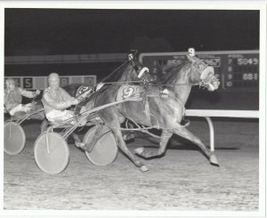 SCIOTO DOWNS Harness Horse Race , APOCKLUS WOE  wins, 1983