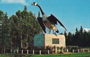 Canada Wild Goose Wawa Trans Canada Highway Ontario