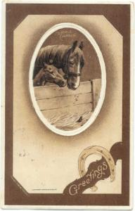 Horse and Colt Greeting Card A Nobel Charger by S.M.Salke 1909, Embossed D/B