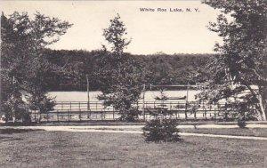 The Grounds Livingston Manor White Roe Lake New York Albertype