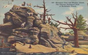 Mountain Goat and Monkey Island Chicago Zoological Park Brookfield Illinois C...