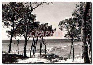 Old Postcard Island Normoutier Vendee Thorn les Pins at the Moulin de la Bosse