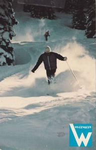 Powder Skiing, Whitewater Ski Area, Boxx 66, Nelson, British Columbia, Canada...