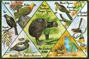 New Zealand Multi View Postcard, Birds and Fauna, N.Z 77Z