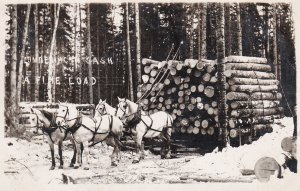 RP; PRINCE ALBERT, Saskatchewan, Canada, PU-1911; Sled of logs