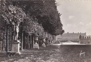 France Versailles Jardins du Palais L'allee royale