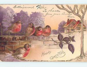 1907 Lots Of Cute Birds Sitting On Brick Wall o9749