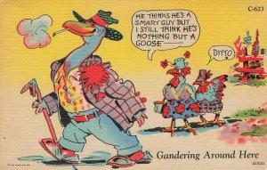 Postcard Gandering Around Here Comic Turkey's VPC03.