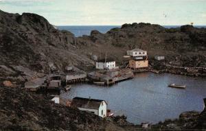 Triangle Labrador Canada Harbor View Fishing Vintage Postcard JD933935