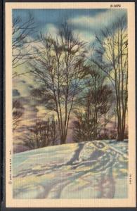 Winter Scene BIN